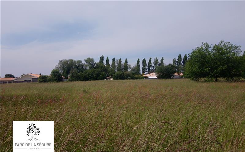 Vente Terrain LA TESTE DE BUCH (33260) - 339 m² - Quartier La Teste