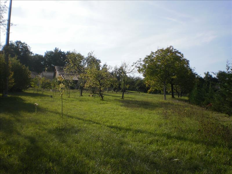 Terrain PILLAC -  - 3770 m²