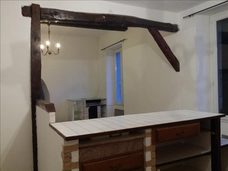 Maison PUISSALICON - 4 pièces  -   195 m²