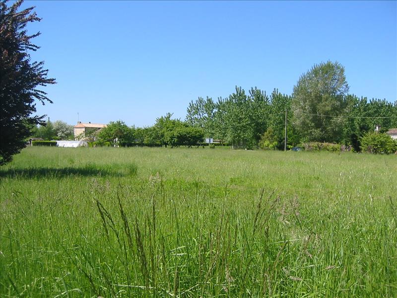 Terrain DURAS -  - 2500 m²