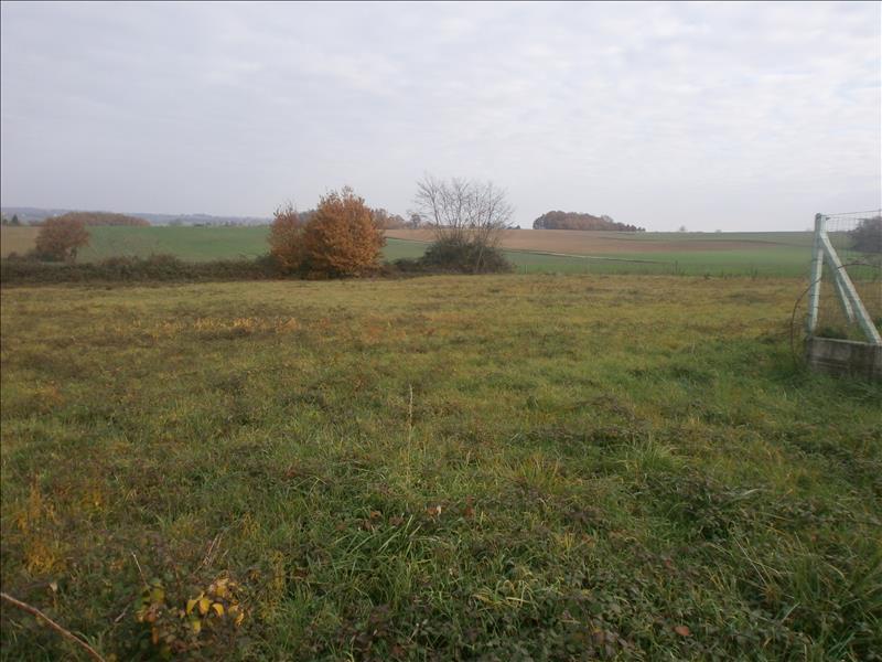 Terrain MIRAMONT DE GUYENNE -  - 2713 m²