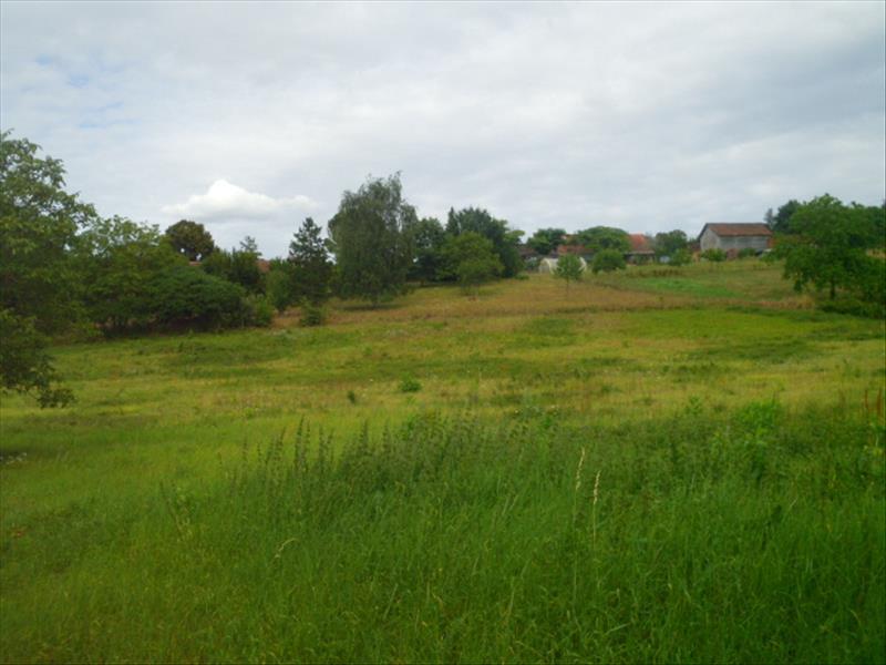 Terrain CAMPAGNE - 7 pièces  - 3500 m²