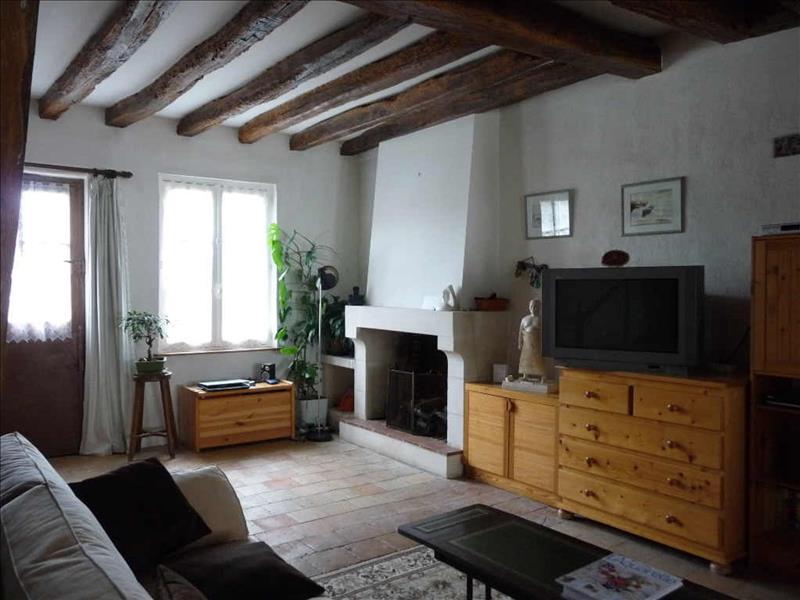 Maison DAME MARIE LES BOIS - (37)