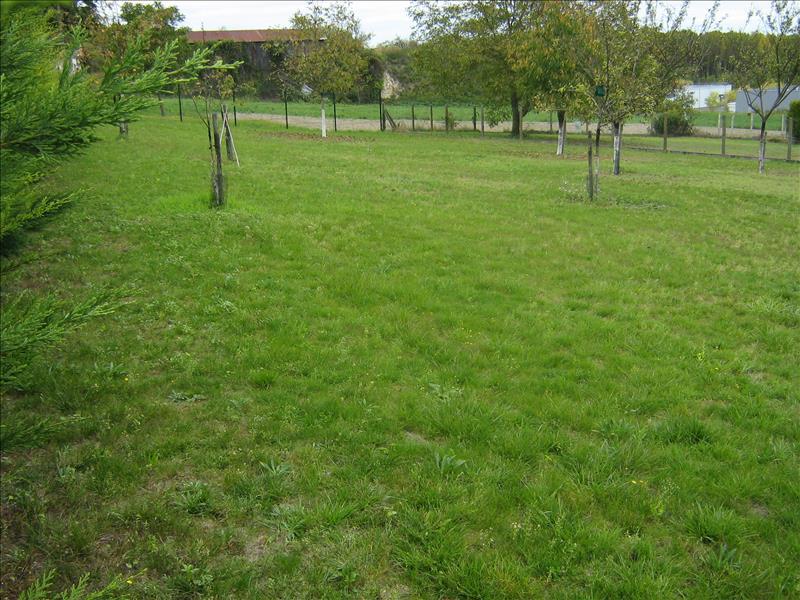 Terrain LOCHES -  - 500 m²