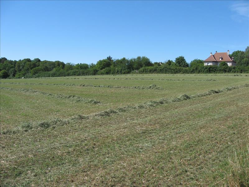 Terrain GRAMAT -  - 13400 m²