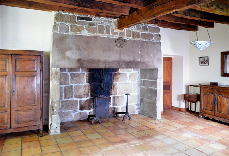 Maison ST BAZILE DE MEYSSAC - 11 pièces  -   375 m²