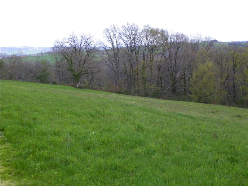 Terrain COLLONGES LA ROUGE -  - 6000 m²