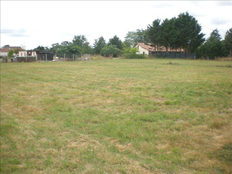 Terrain LE PIZOU -  - 1703 m²