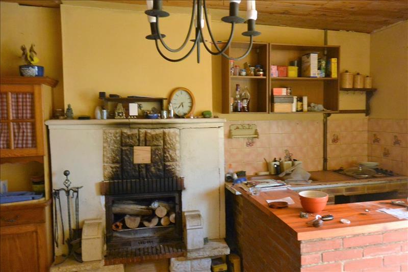 Maison MENETREOLS SOUS VATAN - (36)