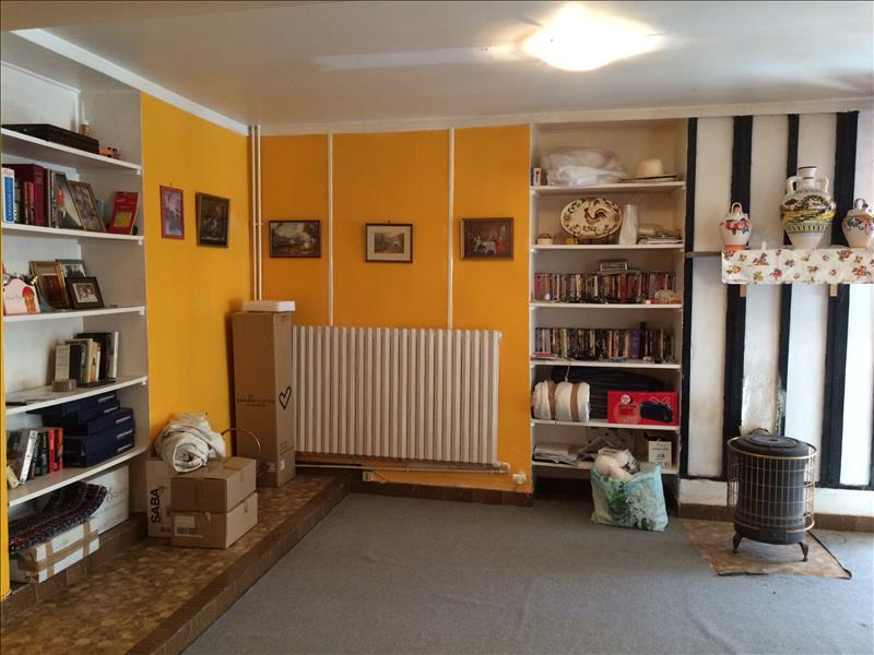 Maison ORSENNES - (36)