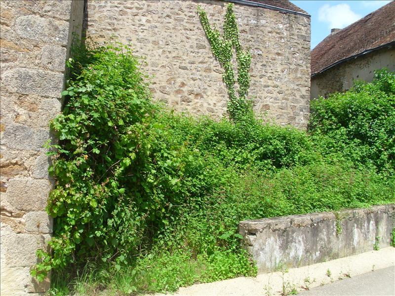 Grange LOURDOUEIX ST MICHEL -  -