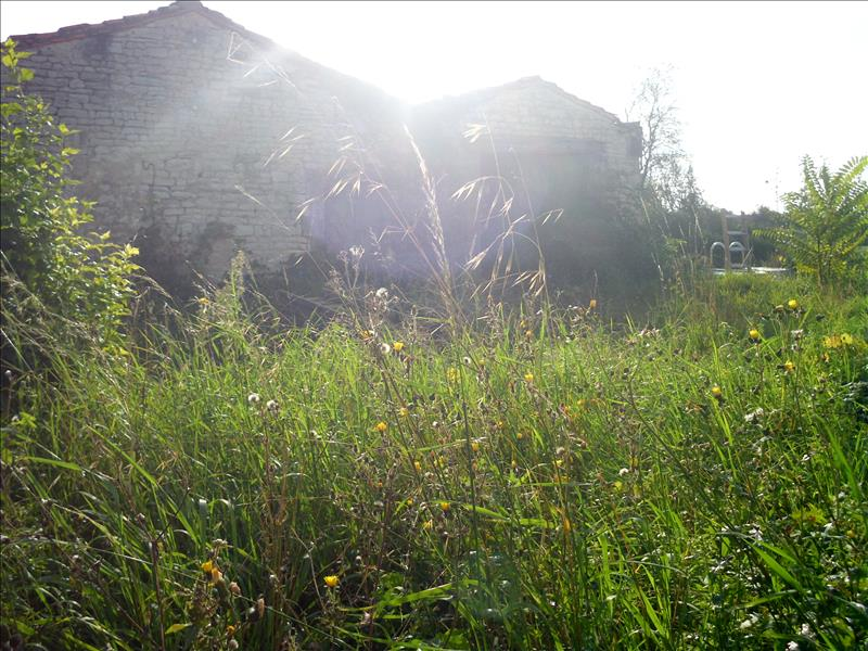 Grange MARCILLAC LANVILLE - (16)