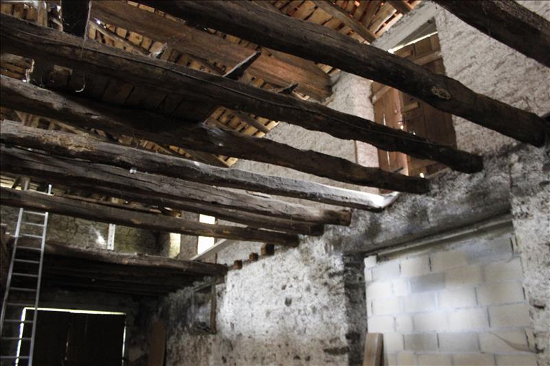 Grange AIXE SUR VIENNE - 1 pièce  -   150 m²