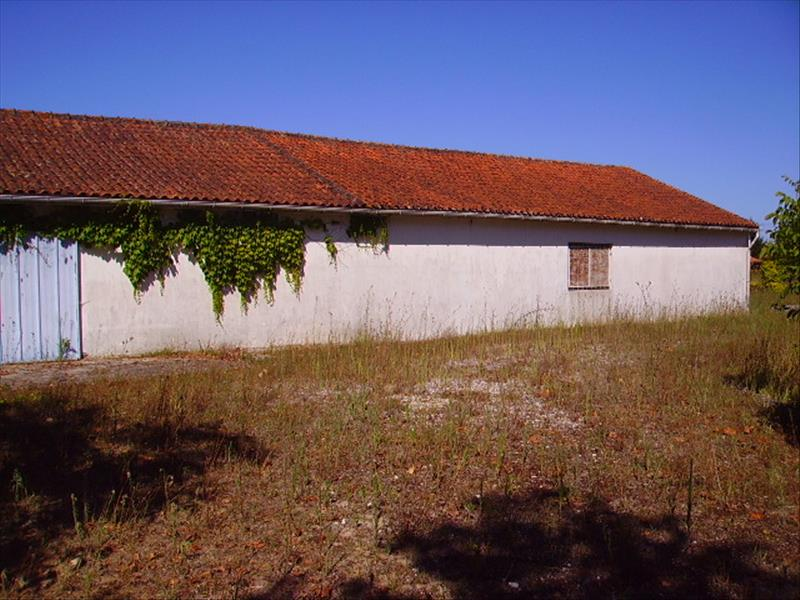 Maison ST ESTEPHE - (33)