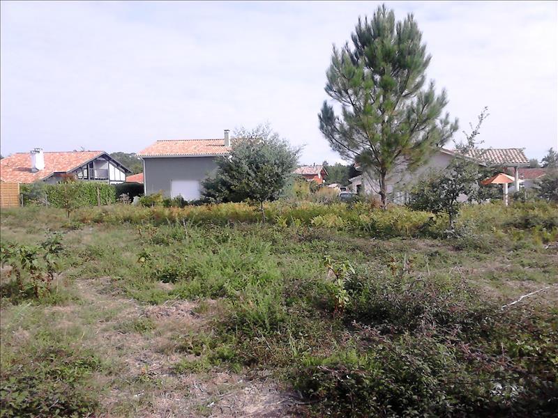 Terrain LIT ET MIXE -  - 893 m²