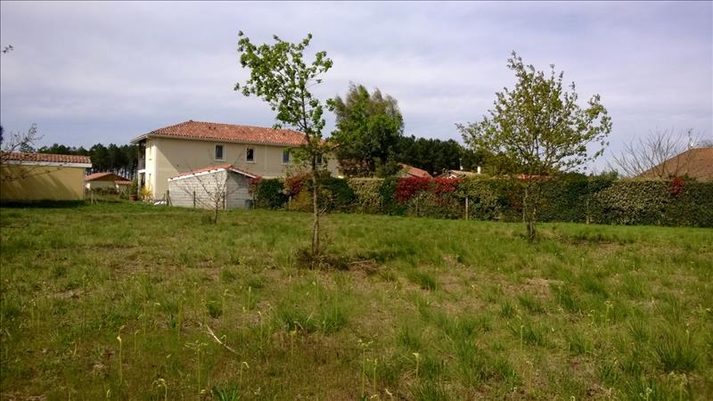 Terrain LINXE -  - 1326 m²