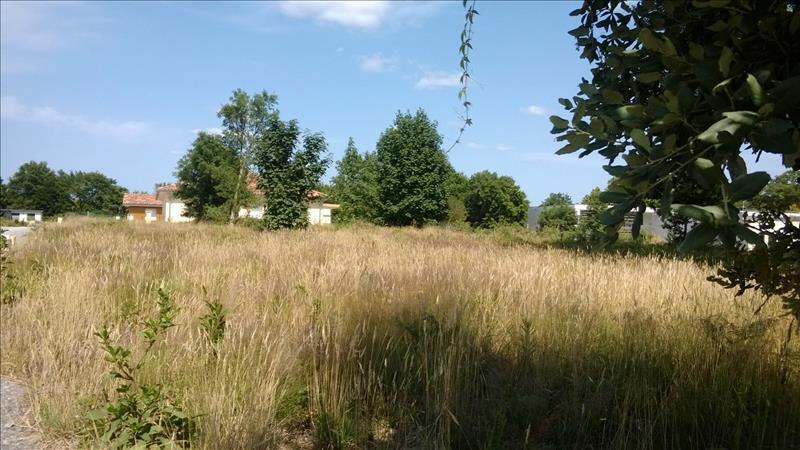 Terrain LINXE -  - 967 m²