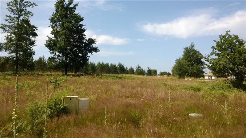 Terrain LINXE -  - 868 m²
