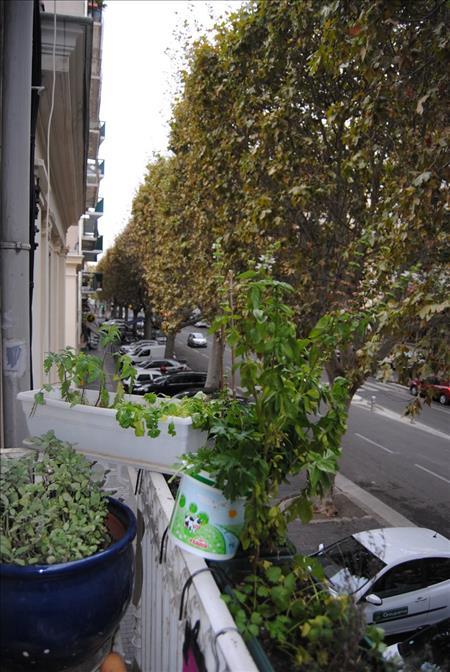 Appartement SETE - 2 pièces  -   40 m²