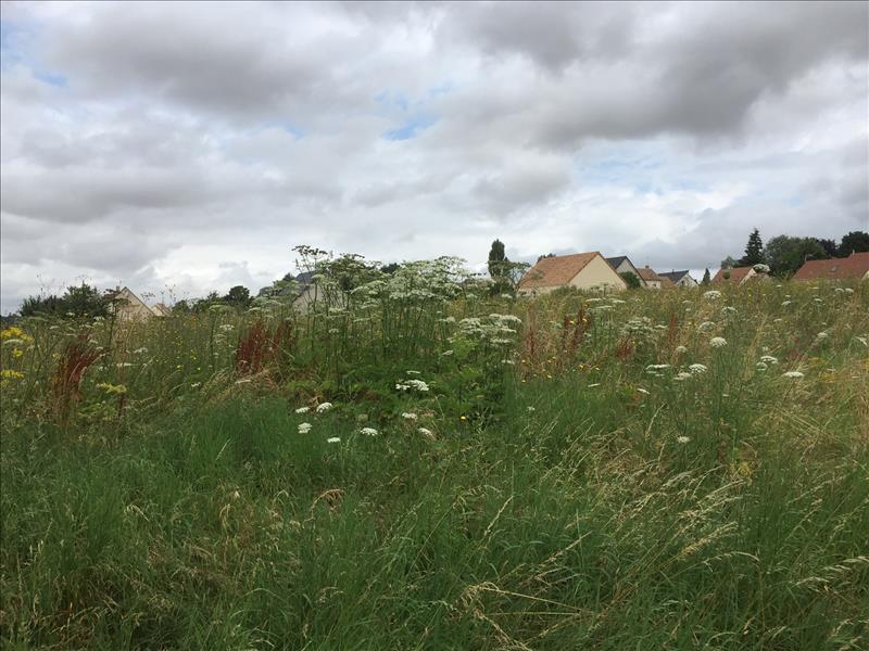 Terrain DAMMARTIN EN SERVE -  - 1500 m²