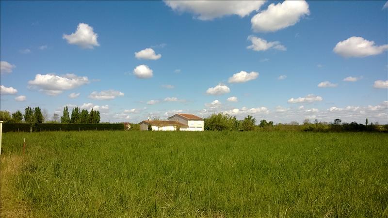 Terrain NERCILLAC -  - 1258 m²