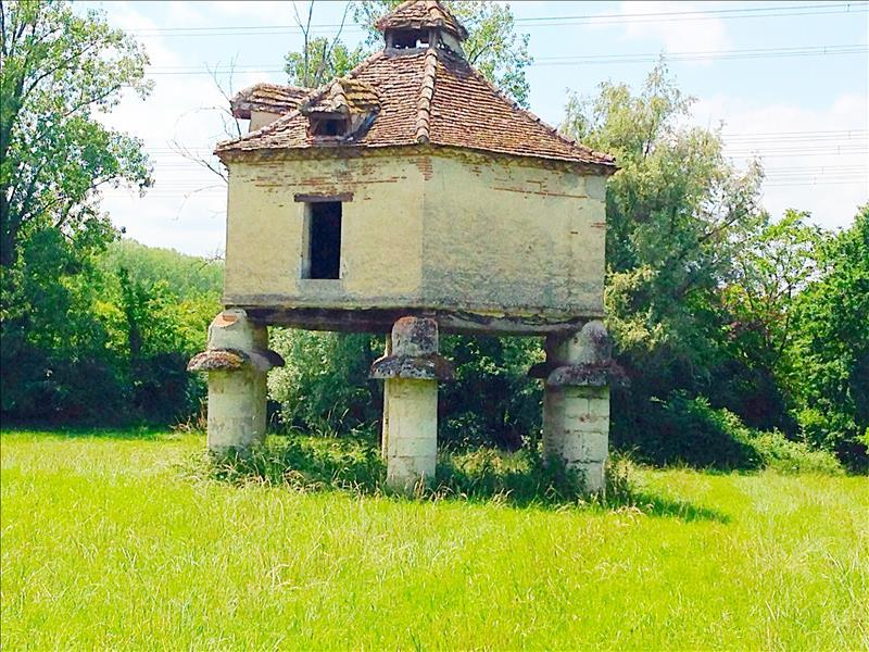 Château SERIGNAC SUR GARONNE - 9 pièces  -   300 m²
