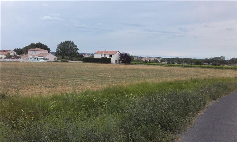 Terrain TOURBES -  - 7300 m²