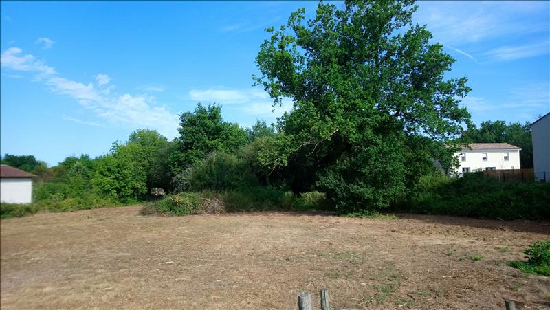 Vente Terrain LES BILLAUX (33500) - 12470 m² -
