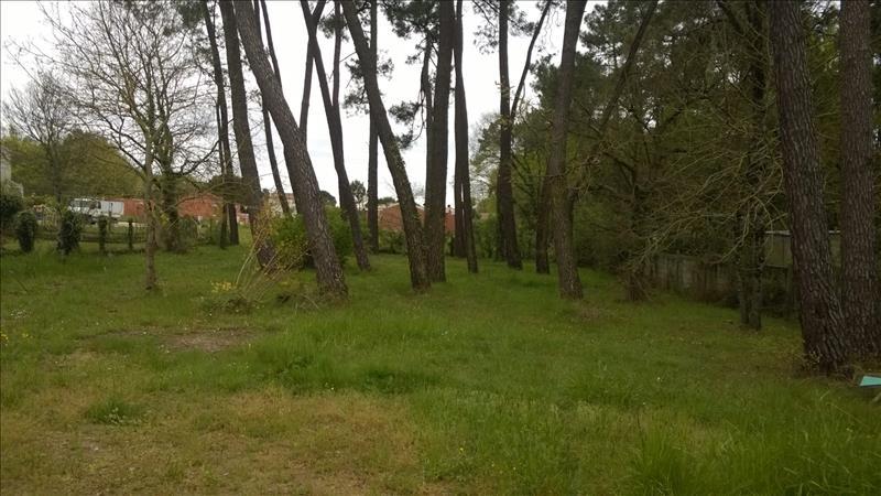 Terrain BREUILLET -  - 1000 m²