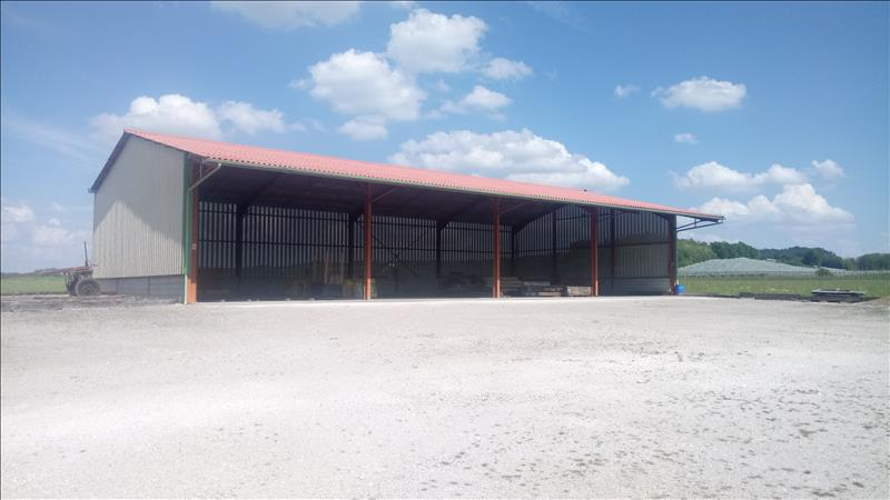 Local commercial    -  1 700 m² - LAFRANCAISE (82)