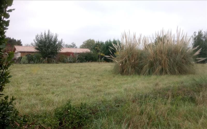 Vente Terrain TALAIS (33590) - 1737 m² -