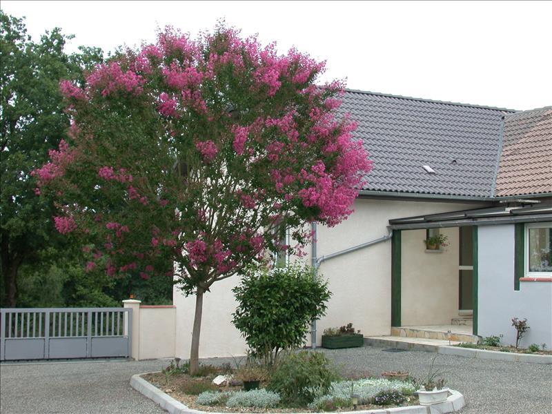 Maison  - 11 pièces    - 282 m² - ARTHEZ DE BEARN (64)
