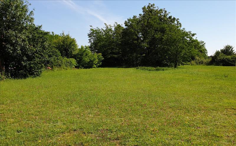 Vente Terrain COUQUEQUES (33340) - 3307 m² -