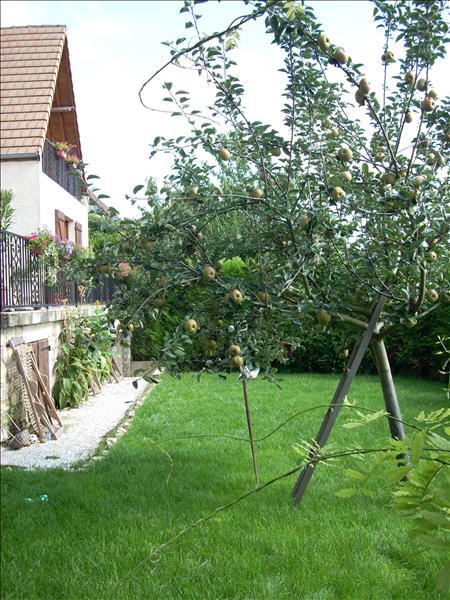 Maison VAUX SUR SEINE - 7 pièces  -   230 m²