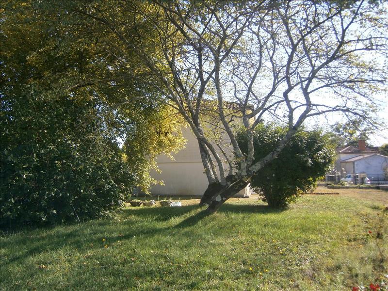 Maison BUSSAC FORET - (17)