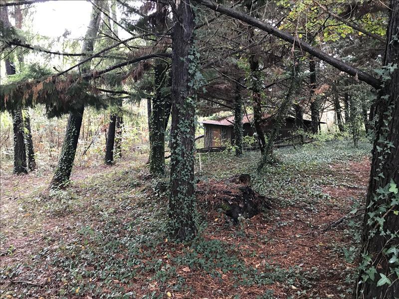 Terrain    - 2200 m² - AURIAC DU PERIGORD (24)