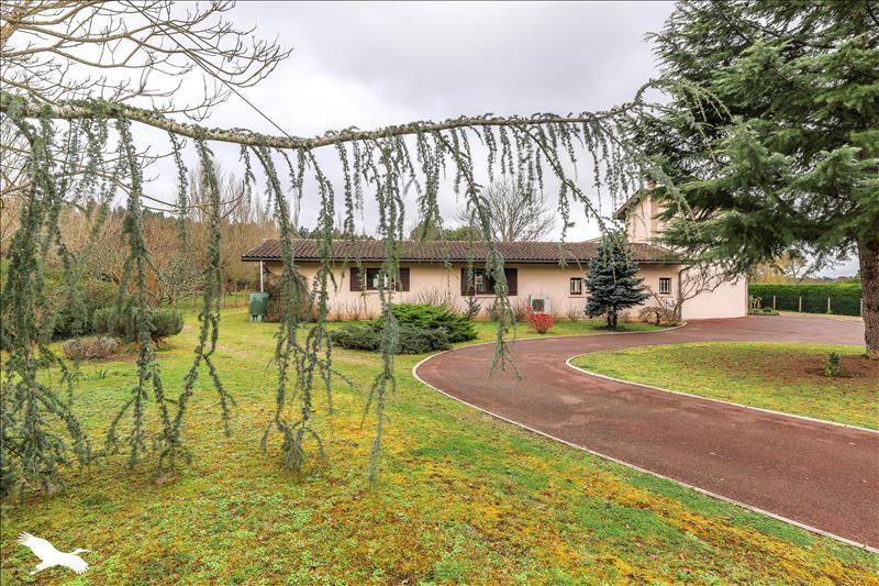 Vente Maison St Morillon  33650  7 Pi U00e8ces 207 M U00b2